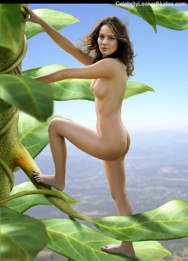 Free Nude Celeb Amy Acker 23 pic
