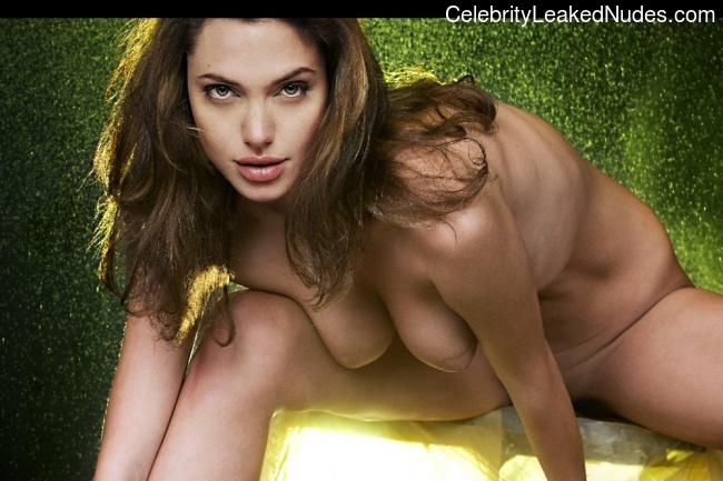 Naked Celebrity Pic Angelina Jolie 29 pic