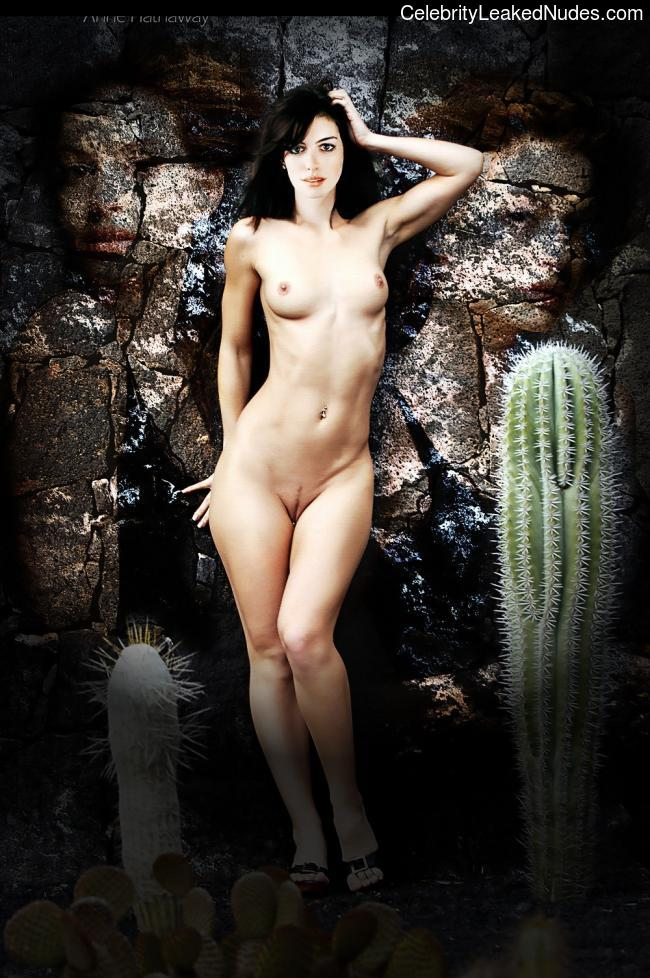 Nude Celeb Pic Anne Hathaway 28 pic