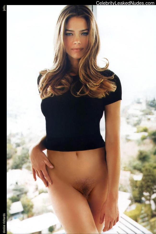 Denise richards celebrity fake nudes