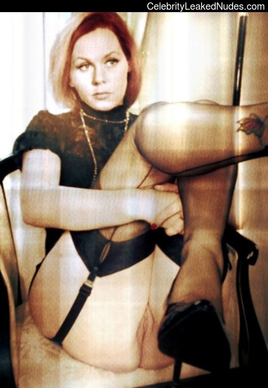 Elizabeth Mongomery Nude 61