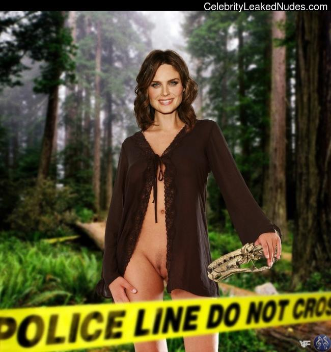 Celebrity Leaked Nude Photo Emily Deschanel 25 pic
