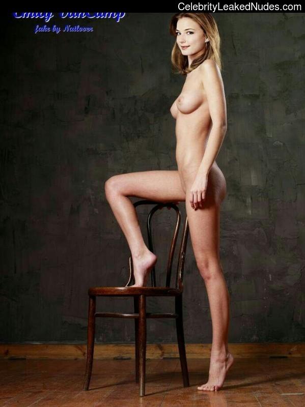 Nude Celeb Pic Emily Van Camp 1 pic