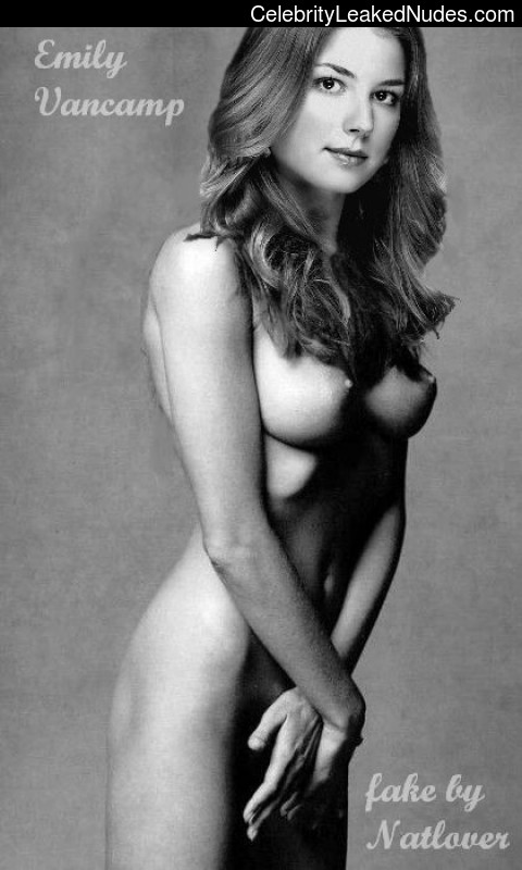 Real Celebrity Nude Emily Van Camp 13 pic
