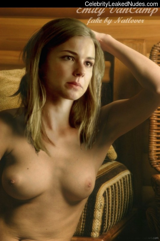 Celebrity Leaked Nude Photo Emily Van Camp 22 pic