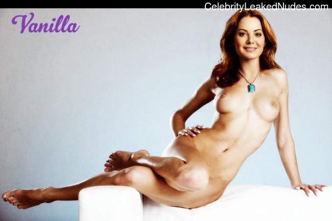 Celebrity Naked Erica Durance 3 pic