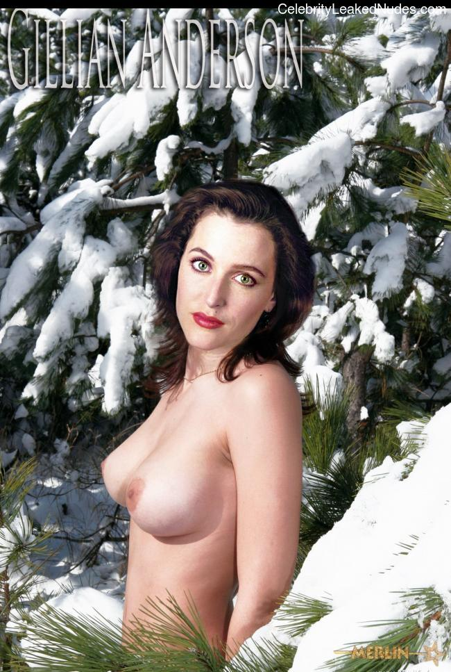 Naked Celebrity Pic Gillian Anderson 27 pic