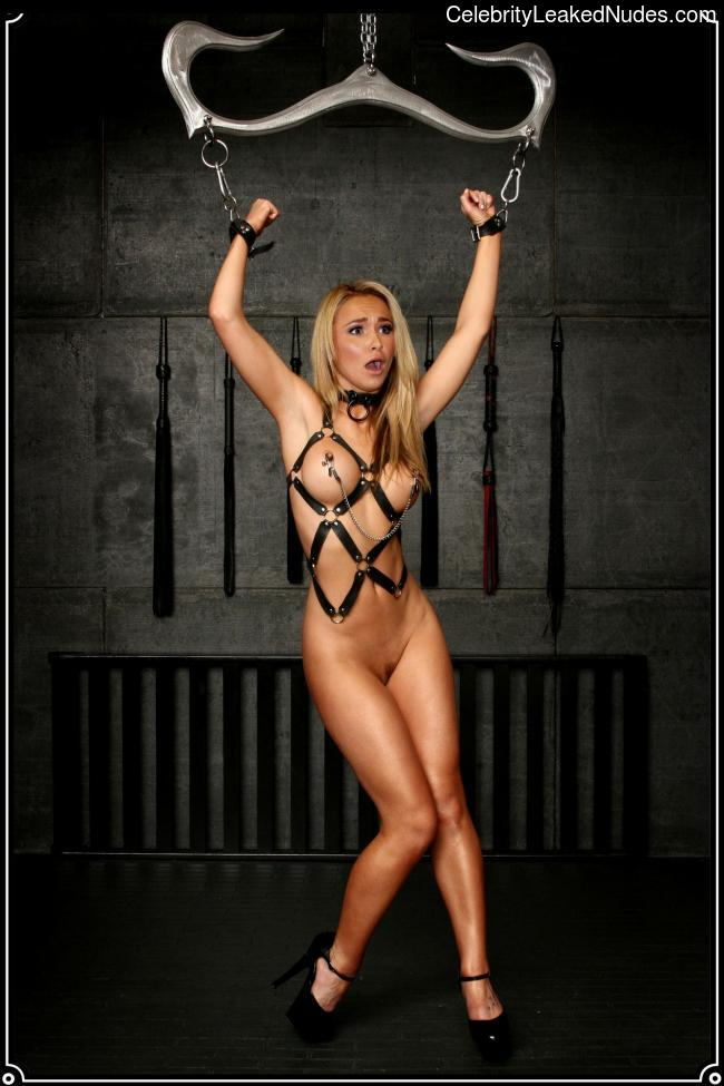 Celeb Naked Hayden Panettiere 26 pic