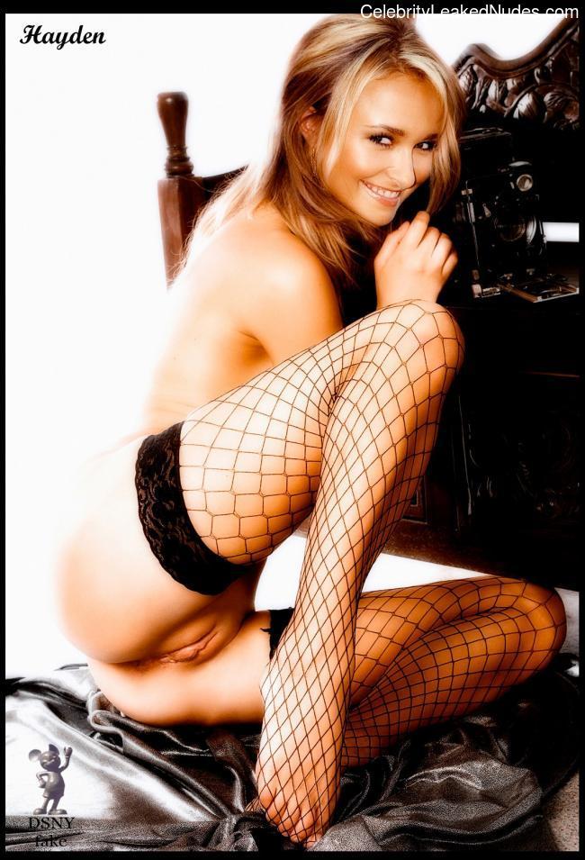 Best Celebrity Nude Hayden Panettiere 12 pic