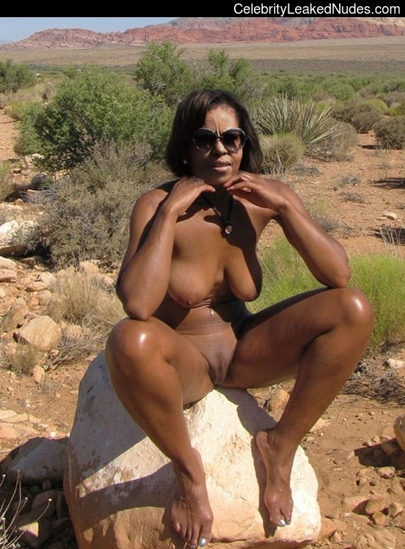 Michelle obama nude fakes that can