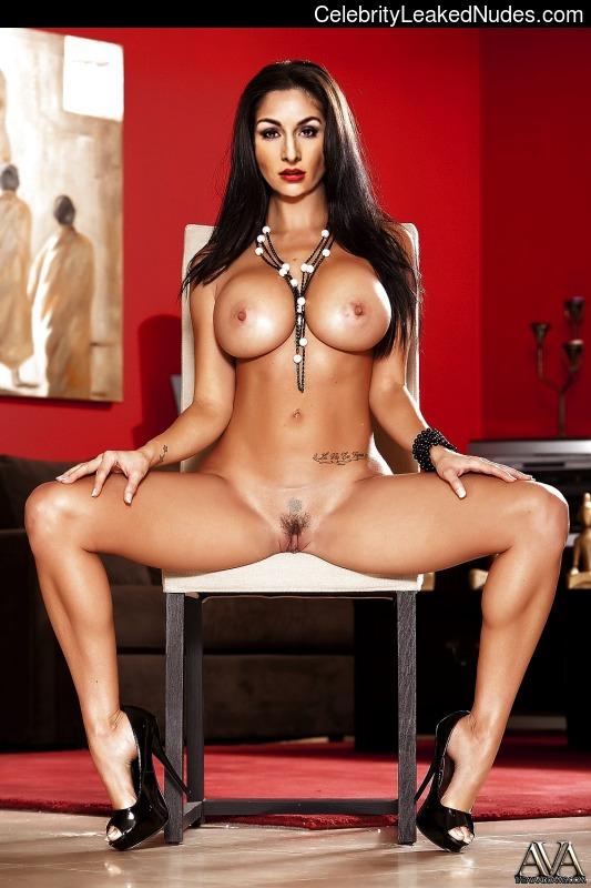 bilder von nikki bella nude