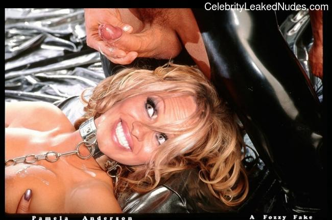 Real Celebrity Nude Pamela Anderson 16 pic