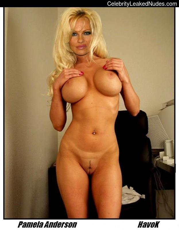 naked Pamela Anderson 15 pic