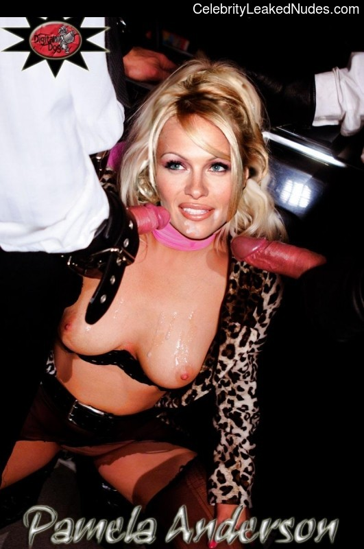 Celebrity Leaked Nude Photo Pamela Anderson 21 pic