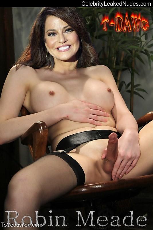 Free nude Celebrity Robin Meade 10 pic