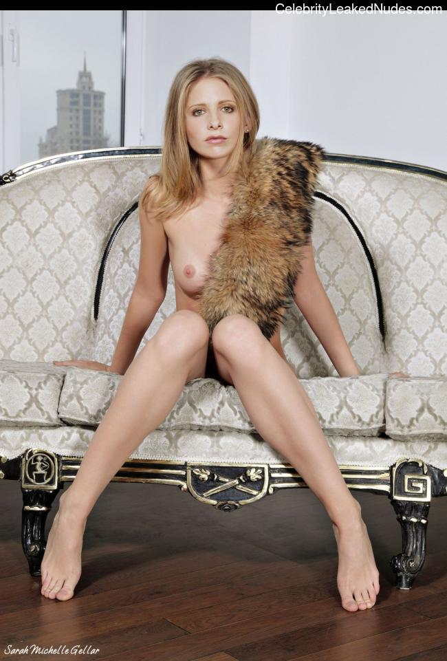 Famous Nude Sarah Michelle Gellar 17 pic