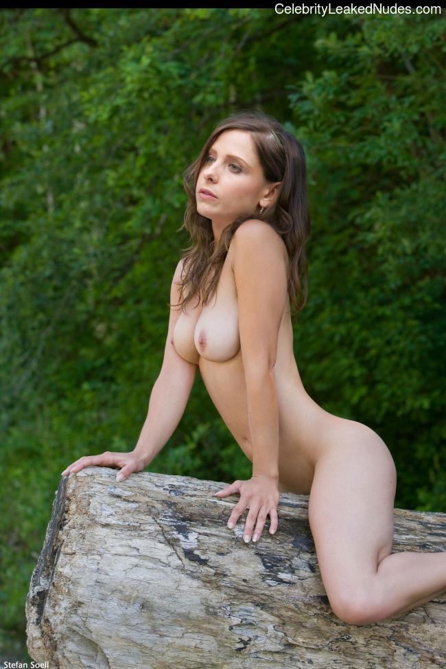 Celeb Naked Sarah Michelle Gellar 7 pic