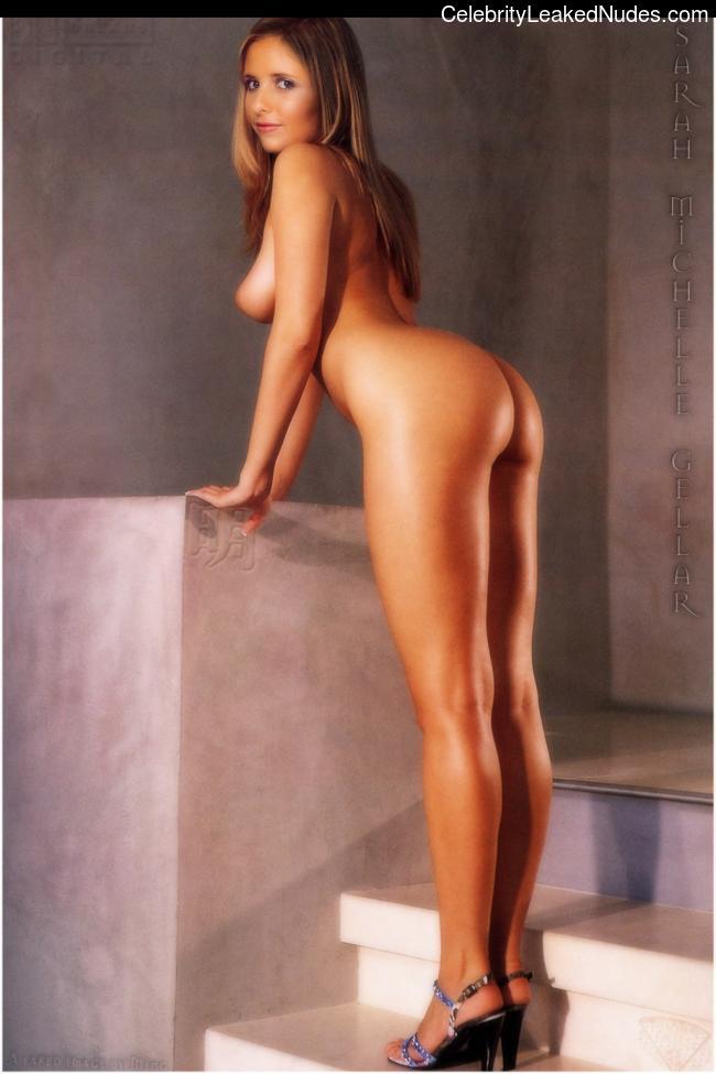 Free nude Celebrity Sarah Michelle Gellar 2 pic