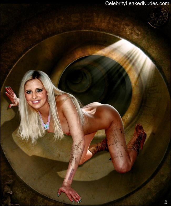 Hot Naked Celeb Sarah Michelle Gellar 12 pic