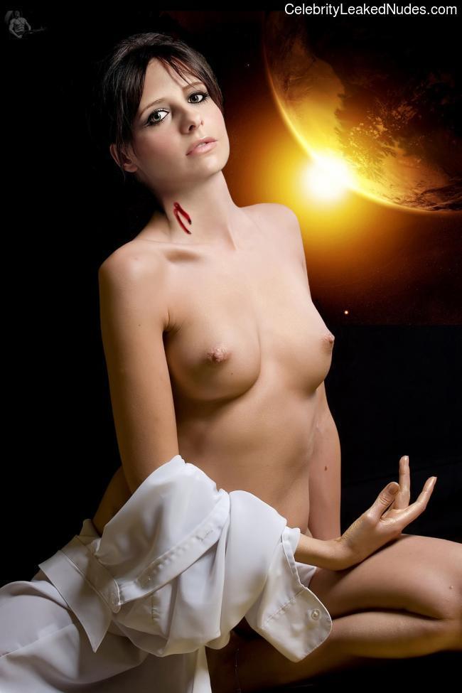 Nude Celebrity Picture Sarah Michelle Gellar 14 pic