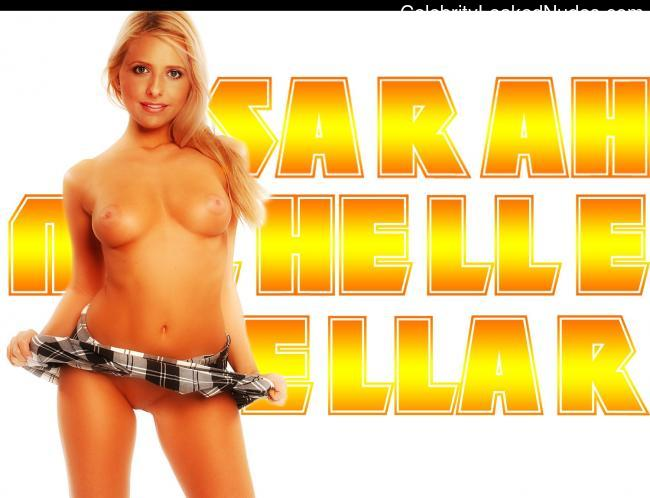 Nude Celebrity Picture Sarah Michelle Gellar 22 pic
