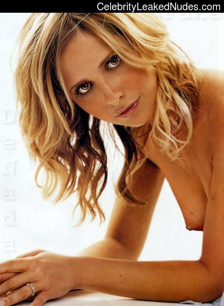 Newest Celebrity Nude Sarah Michelle Gellar 25 pic