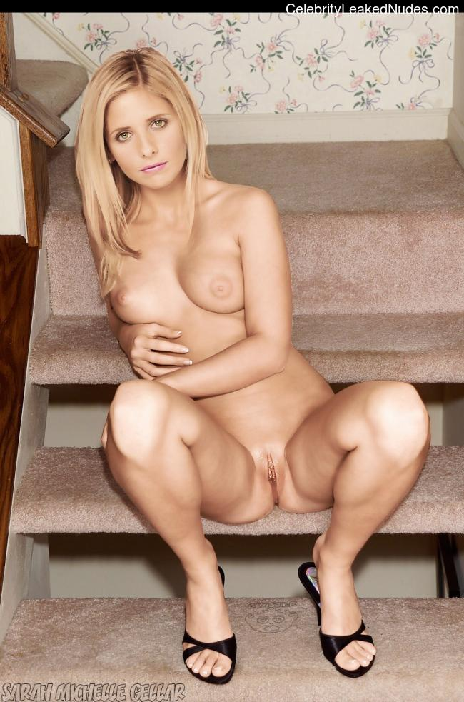 Hot Naked Celeb Sarah Michelle Gellar 27 pic