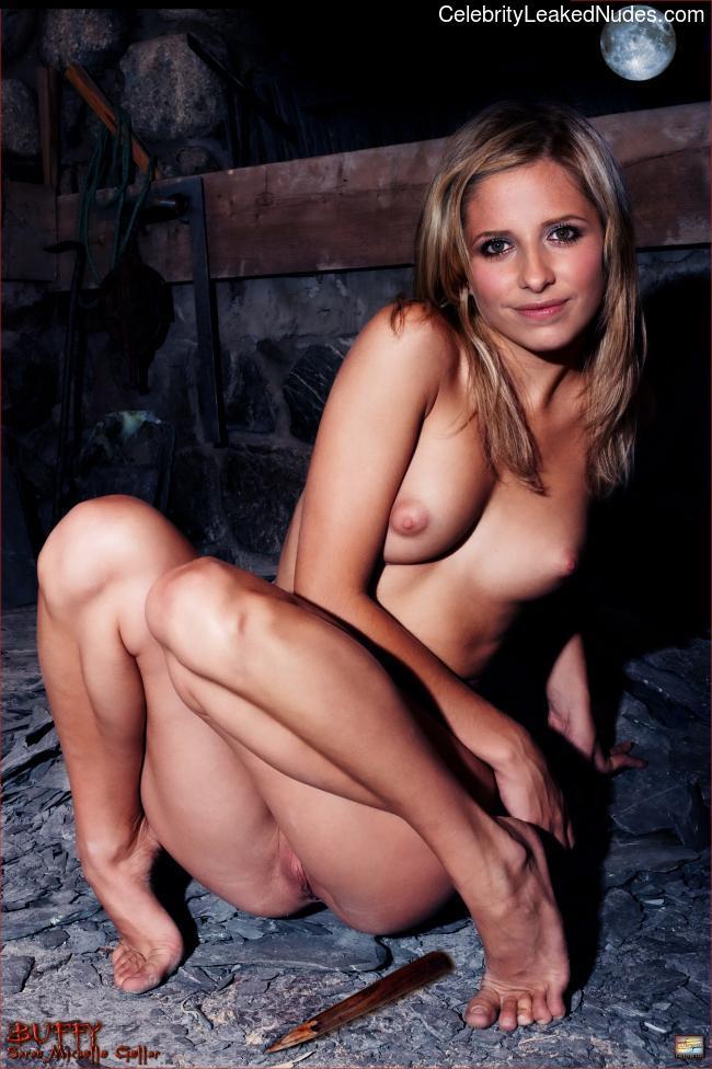 Celeb Nude Sarah Michelle Gellar 29 pic