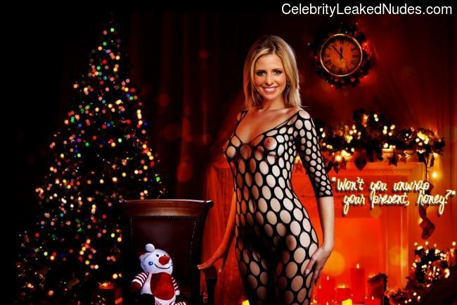 Celebrity Naked Sarah Michelle Gellar 1 pic