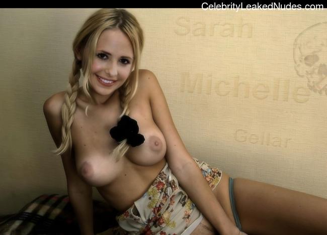 Celeb Naked Sarah Michelle Gellar 4 pic