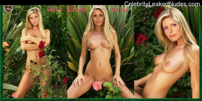Naked celebrity picture Sarah Michelle Gellar 1 pic