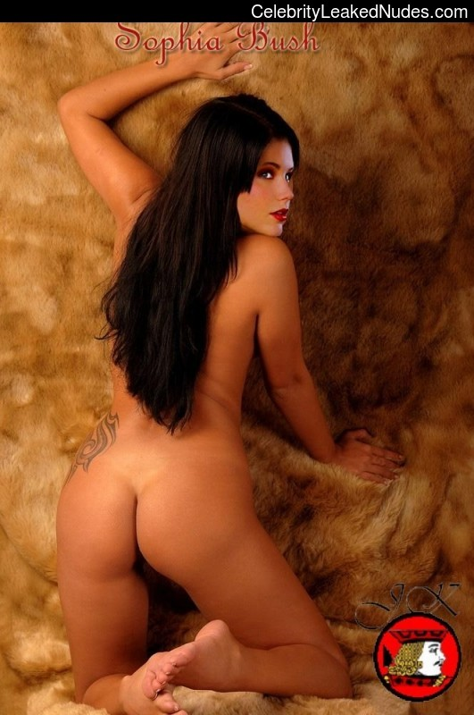 fake nude celebs Sophia Bush 13 pic