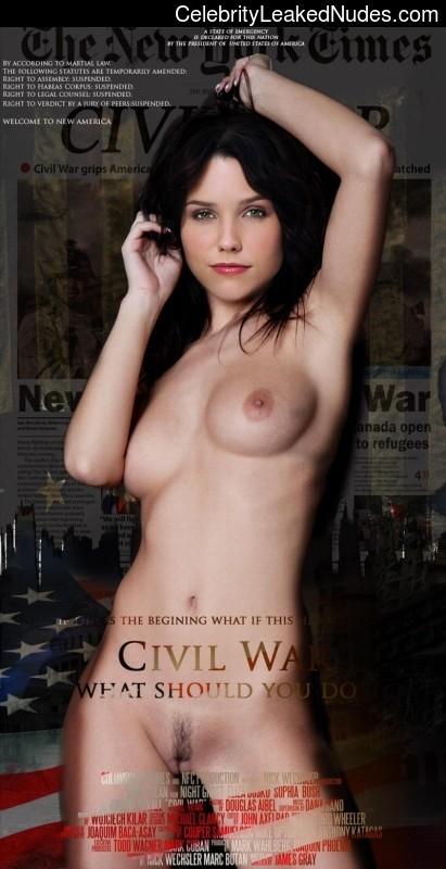 Free Nude Celeb Sophia Bush 19 pic