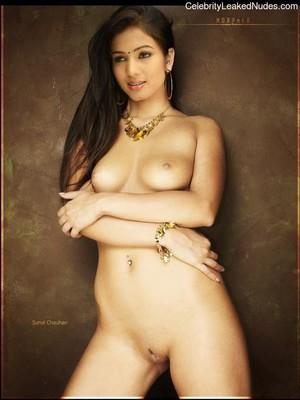 Sonal Chauhan naked