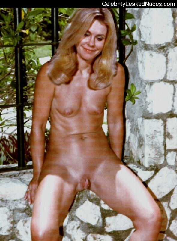 You cannot elizabeth montgomery bewitched nude fakes