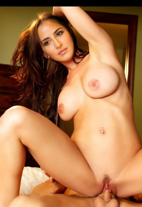 free download nude pornstar photos